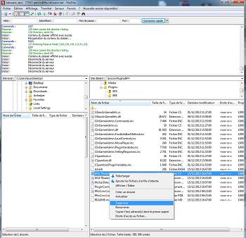 Procon Layer rent server