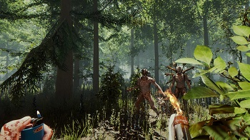 The Forest server rental